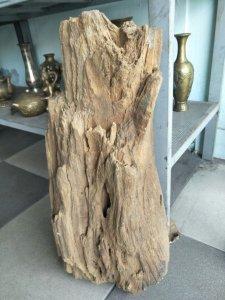Gỗ hóa thạch thành đá quý hiếm độc lạ Phone : 0938 179 545