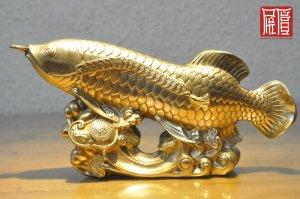 Kim Long Quá Bối Đồng Vàng