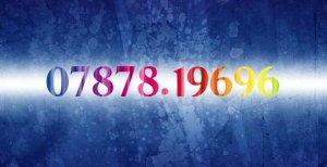 Sim cặp 6969 vs 9696
