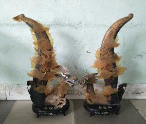 Cặp rồng đôi mồi khổng lồ cao gần 1m quý hiếm độc lạ Phone : 0938 179 545