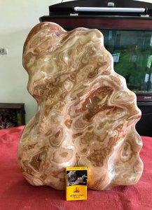 Cây đá can xít vàng hoa, nặng...