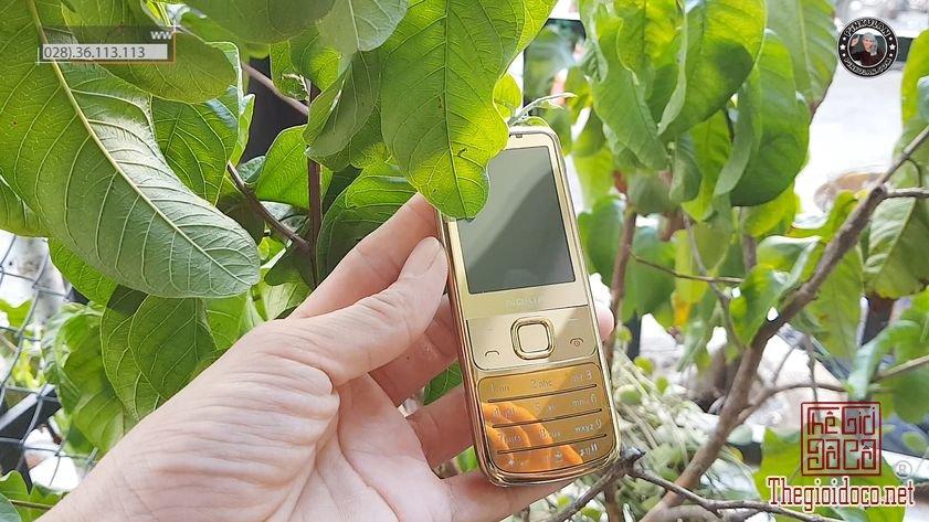 Nokia-6700-Gold-Silver-Pinkulan (4).jpg