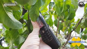 Nokia-8600-Luna (3).jpg