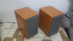 Cặp vỏ thùng loa ONKYO D-062AX...