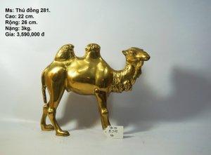 Lạc đà đồng đẹp như vàng 9999....