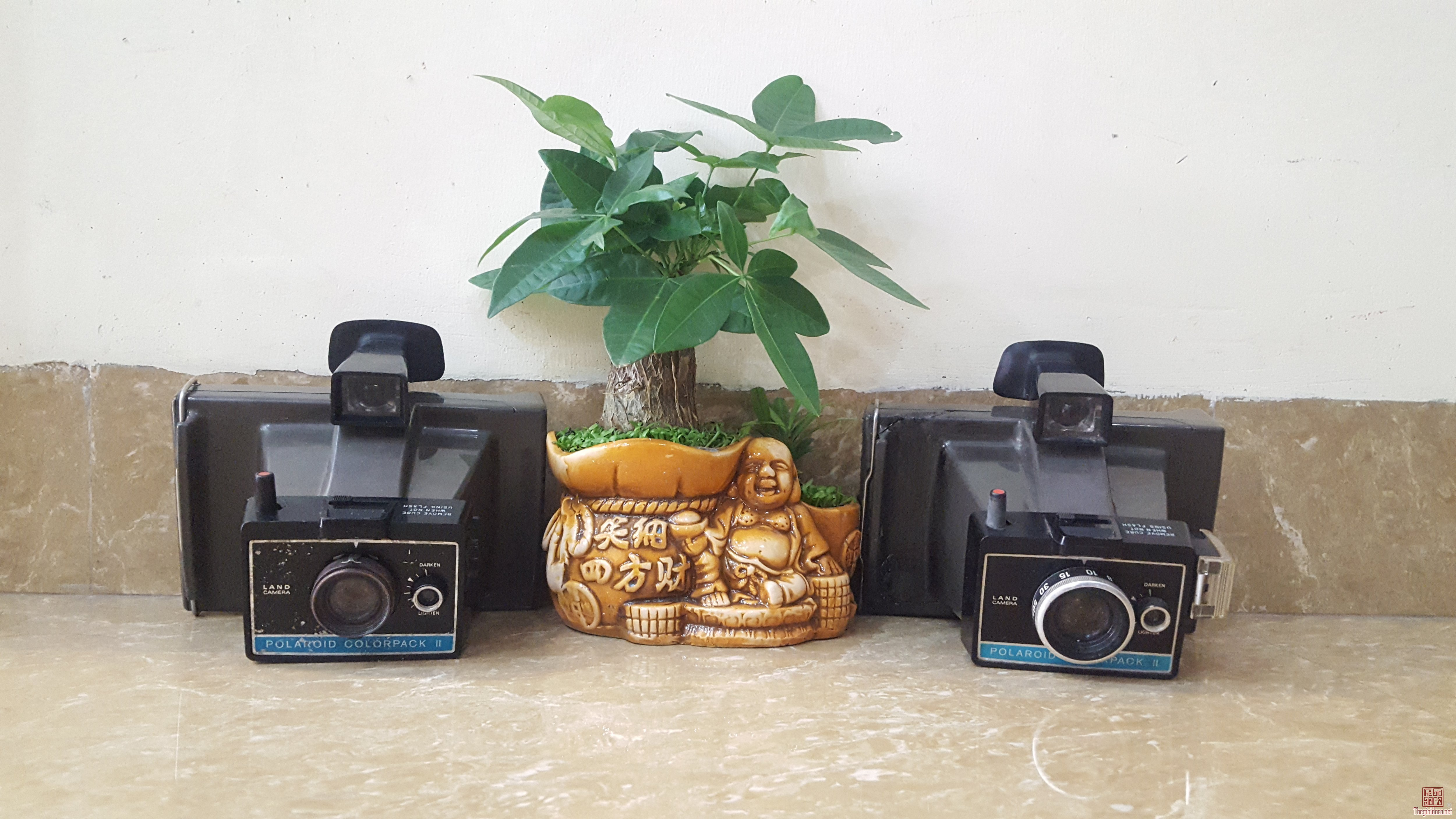 Máy ảnh polaroid của Mỹ