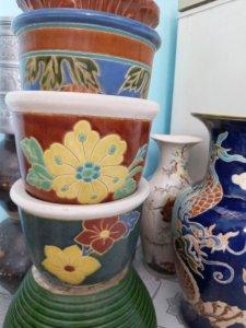 Giao Lưu:5 Chậu Hoa