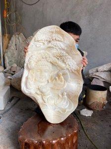 Vỏ sò tai tượng hóa thạch nghìn...